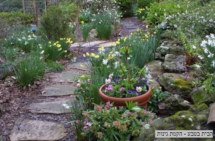 אבנים לגינה