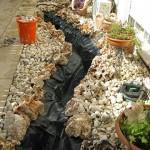 הקמת-נחל-לגינה
