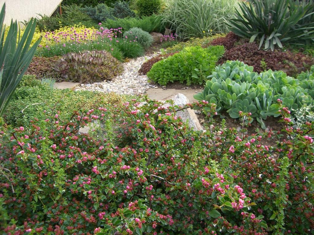 גינון - שבילים לגינה