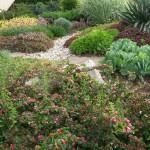 שבילים לגינה