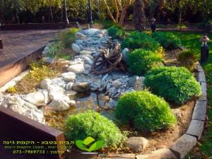 בריכת דגים לגינה מעוצבת